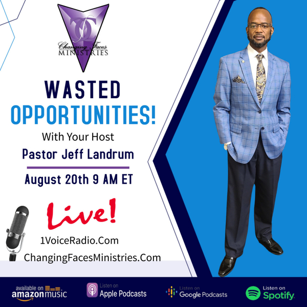 Wasted Opportunities artwork