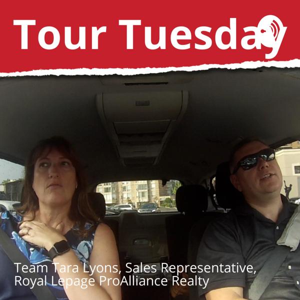 Tour Tuesday with Team Tara Lyons artwork