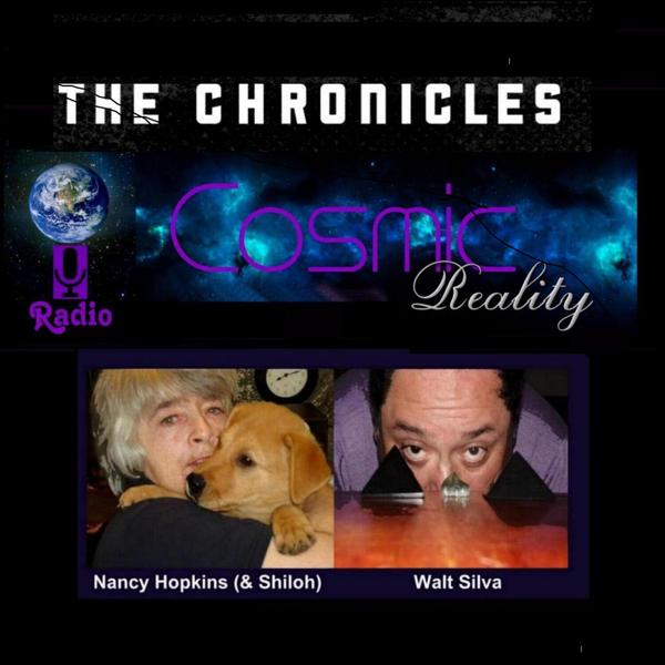 """COSMIC REALITY CHRONICLES"" - Angels & Nature Spirits artwork"