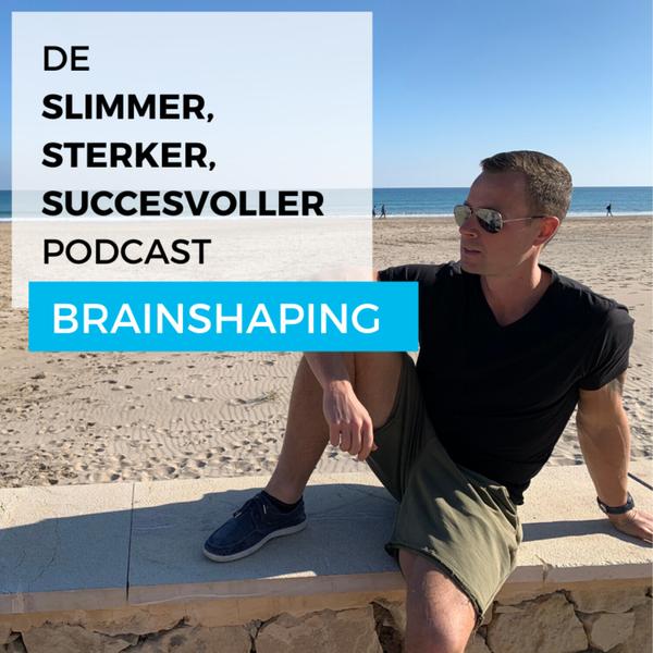 Brainshaping artwork