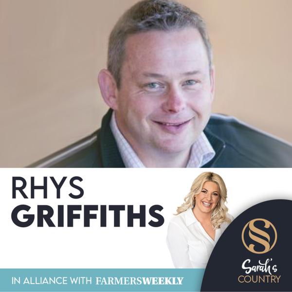 "Rhys Griffiths | ""Velvet coalition targets China"" artwork"