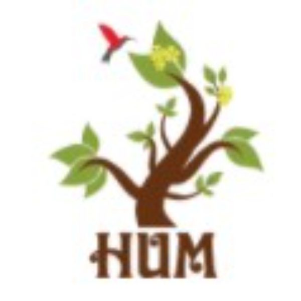 HUM Zinger artwork