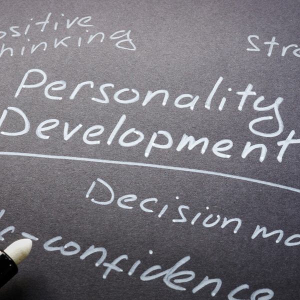 A Brief Look at the Development of Personality & Learning artwork