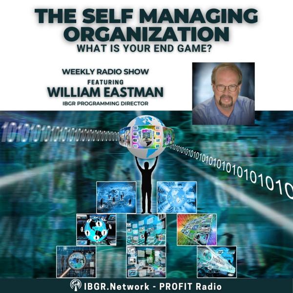 The Self Managing Organization artwork