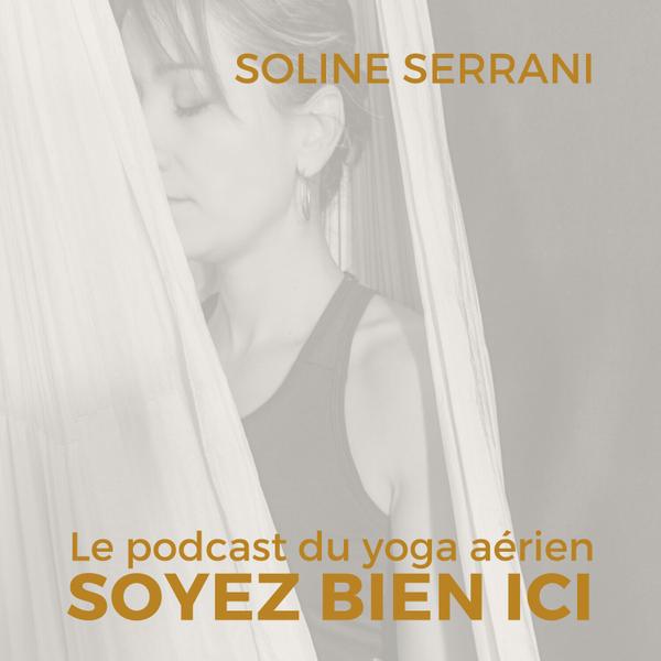 Soline Serrani - professeur de yoga aérien artwork