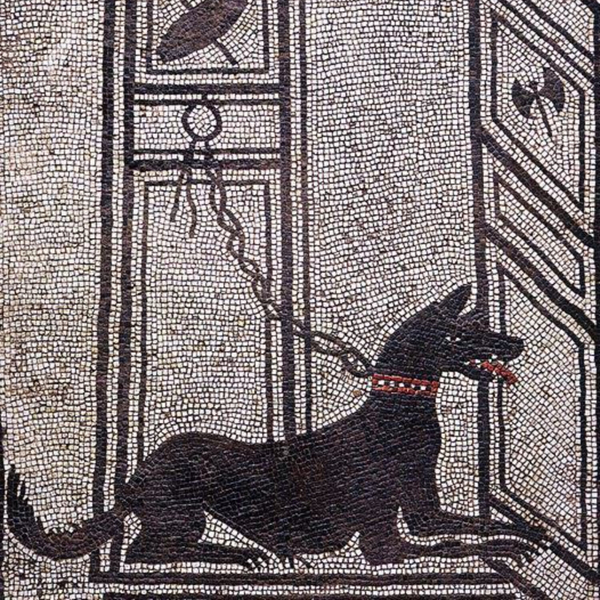 Dogs in the Ancient World