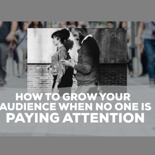 How To Grow Your Audience When No One Is Paying Attention