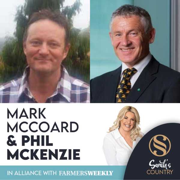 "Mark McCoard & Phil McKenzie | ""Unclear how deer farmers will meet emissions targets"" artwork"