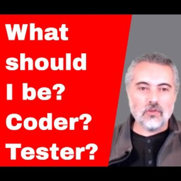 What Should I Be? Programmer or Tester? artwork
