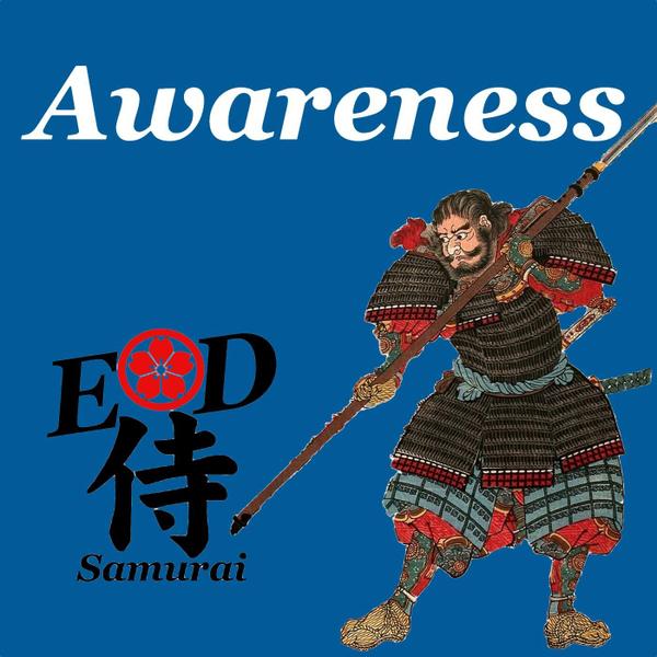 Ep22: Awareness artwork