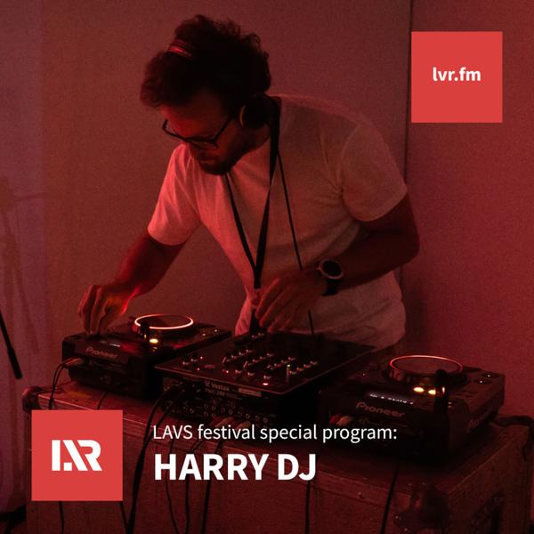 LAVS Festival: Harry DJ (DJ) artwork