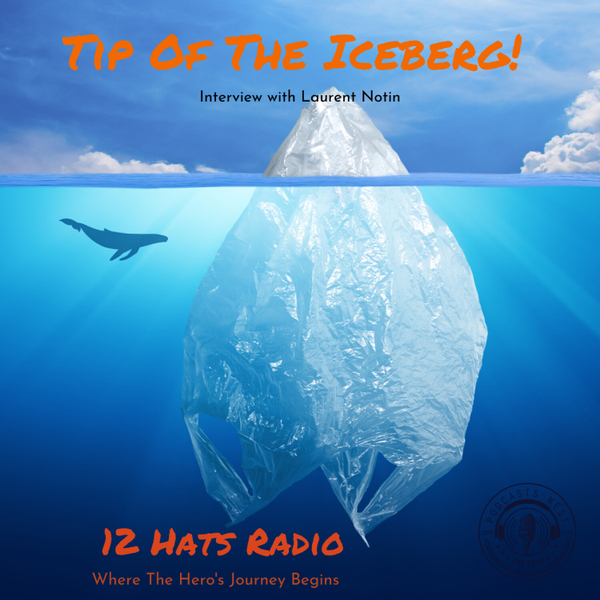 Tip of The Iceberg! Interview with Laurent Notin artwork