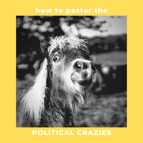 How To Pastor The Political Crazies artwork