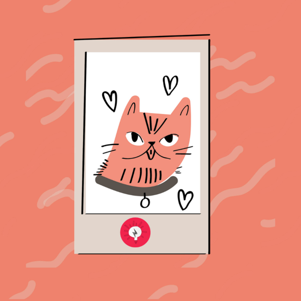 What we learned from trying mental health apps artwork