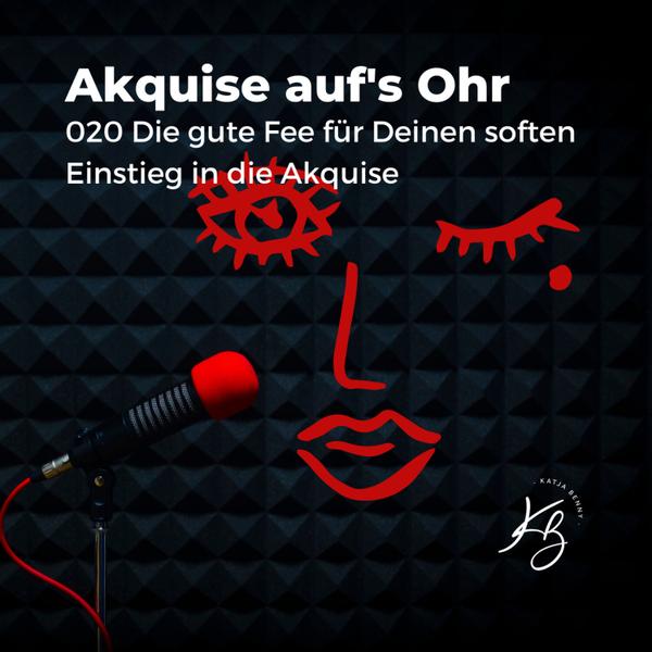 020 Die Gute Fee - handfeste Tipps für den soften Akquisestart artwork